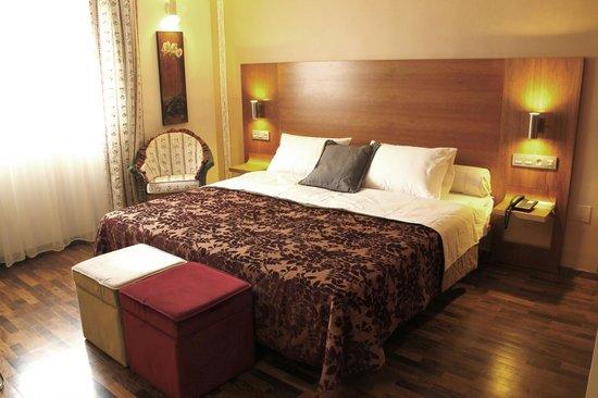 Villa Erina Park Hotel: Habitación doble