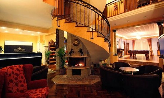 Villa Erina Park Hotel: chimenea