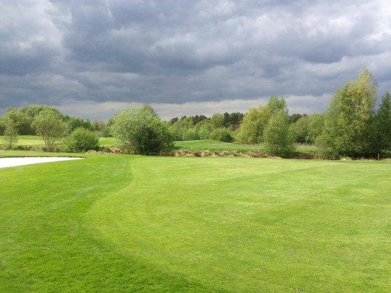 Golf Club Green Eagle