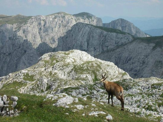Trekking Austria - Guided Mountain Hiking
