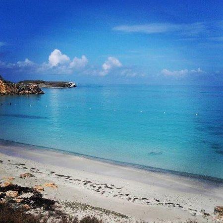 Isla de Caja de Muertos: Sencillamente hermoso!!!