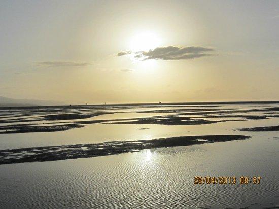 Melia Gorriones Fuerteventura: Playa delante  del hotel