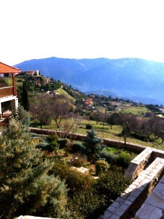 Aegli Arachova: Θέα από  δωμάτιο