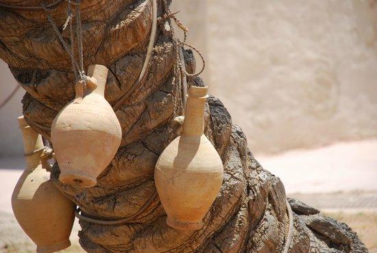 Umm Al Quwain Fort : Pots and a tree