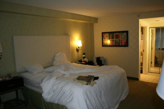 Hampton Inn & Suites Chicago - Downtown: Chambre lit king size