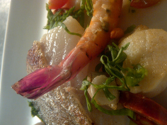 The Square Bar & Restaurant: todays fish special