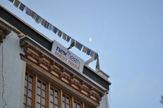 homw away from home picture of new moon guest house leh tripadvisor