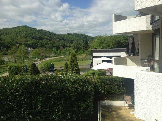 Hotel Moselblick: Ausblick