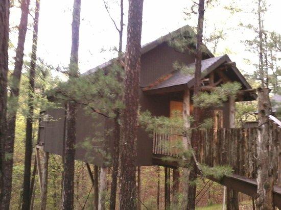 Eureka Springs Treehouses: Venice Treehouse