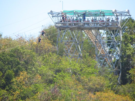 dragons breath zipline labadee all you need to know
