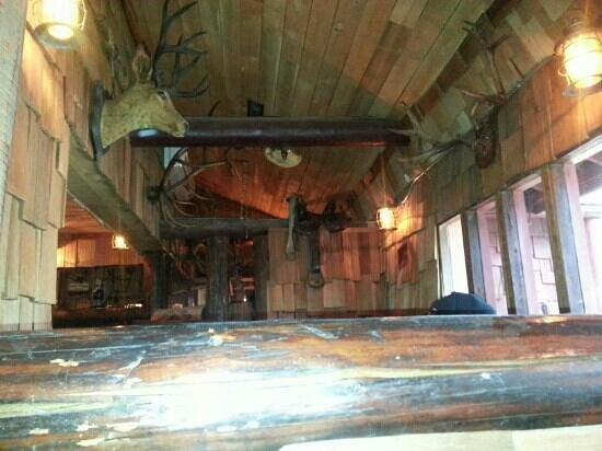 Wolf Lodge Inn: a little taxidermy