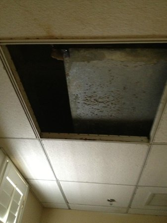 Lakeland Terrace Hotel: Leaky ceiling and collapsed tile in the Publix Suite. Sept 2012