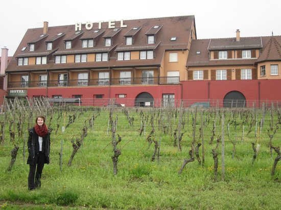 Hotel le Relais du Vignoble : The Hotel and its Vineyards