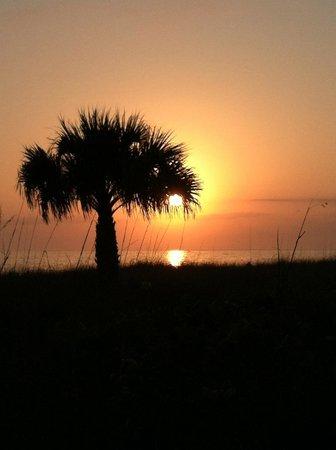 Tortuga Beach Resort: Sunset Beach