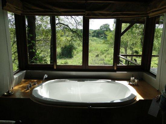 Lion Sands - Tinga Lodge : banheira da suite
