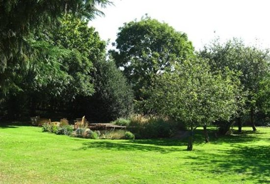 Marton Grange Country House: Pond area