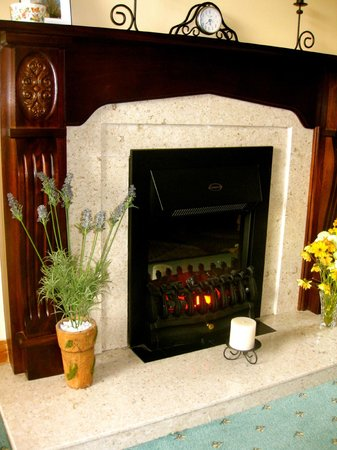 Ashfield Bed & Breakfast: The fireplace in the living-room/lounge.