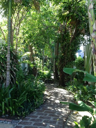 Malibu Koh Samui Resort & Beach Club: the grounds are beautiful and very tropical