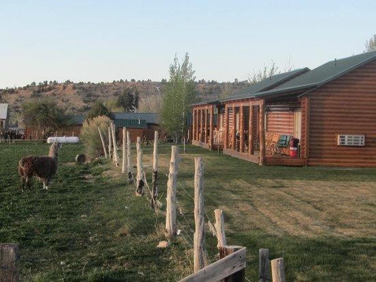 Bryce Canyon Country Cabins: View from behind deluxe cabins