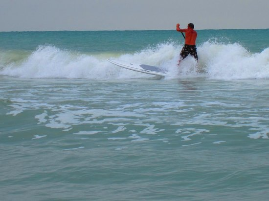 Island Action Sports: Paddle Surf