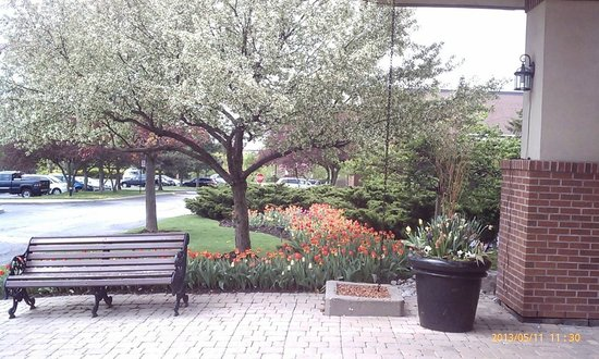 Hilton Mississauga/Meadowvale : Spring has arrived- Front of Hotel 1