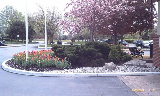 Hilton Mississauga/Meadowvale : Spring has arrived- Front of Hotel 2