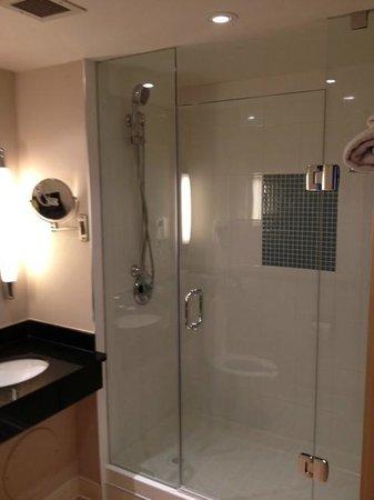Novotel Ottawa: salle de bain