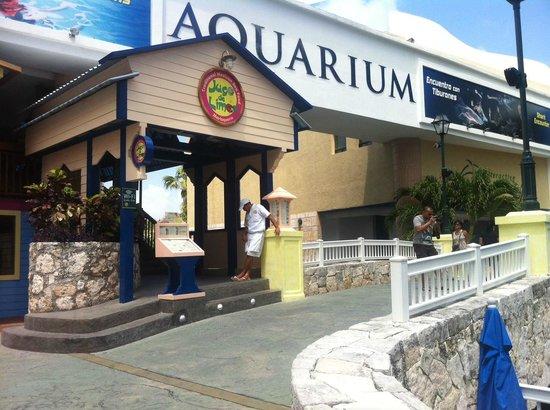 Jugo De Limon Cancun Restaurant Reviews Phone Number