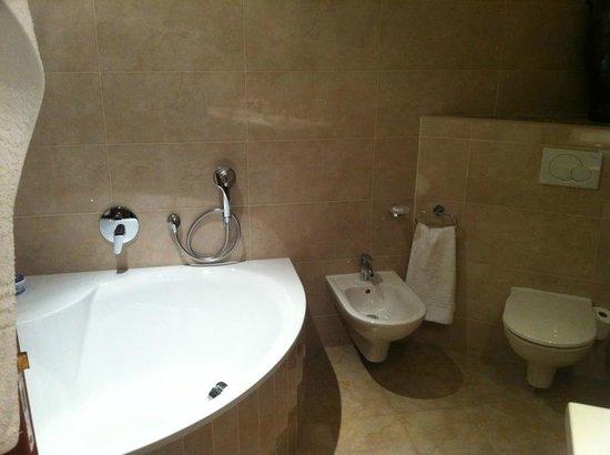 Blaauwheim Guest House: Bathroom of Suit upstairs