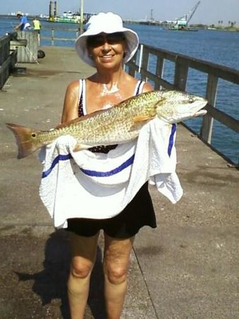 Beachgate CondoSuites and Hotel: When you can pull yourself away from the beach, and Beach Gate Condos, the fishing is great!