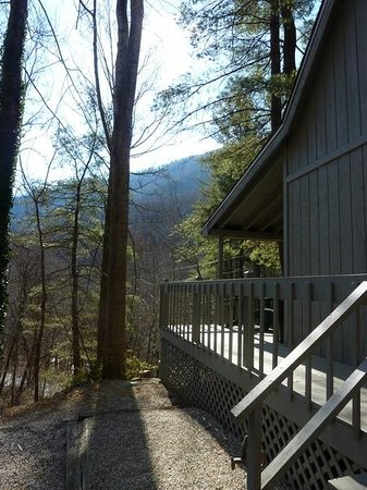The Cabins At Crabtree Falls: View from Barb's driveway