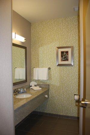 Fairfield Inn & Suites Amarillo Airport: Bathroom