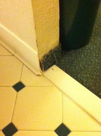 La Quinta Inn Columbus Airport Area: dirty, worn rooms