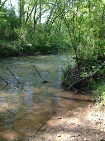 ذا ستوفال هاوس: Creek beyond field at Stovall House