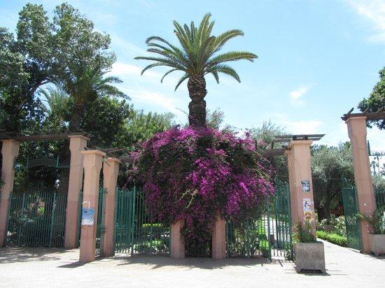 Jardin el Harti: Entry