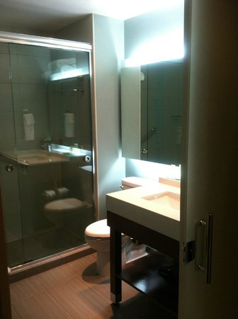 Hyatt Place San Jose Pinares: Bathroom