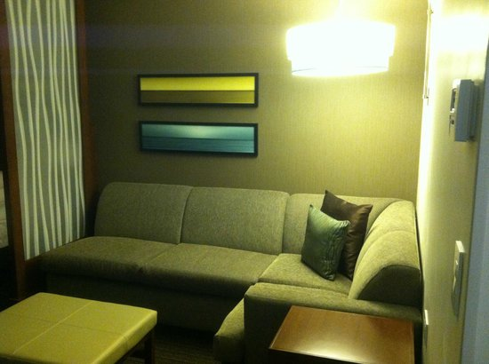 Hyatt Place San Jose Pinares : Living Area