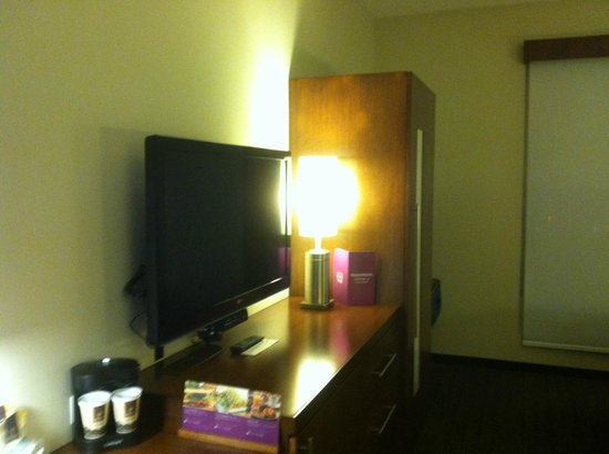 Hyatt Place San Jose Pinares : TV and Storage