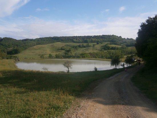 Fattoria Voltrona: lago