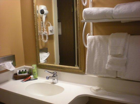 Hotel Mark Twain: bathroom