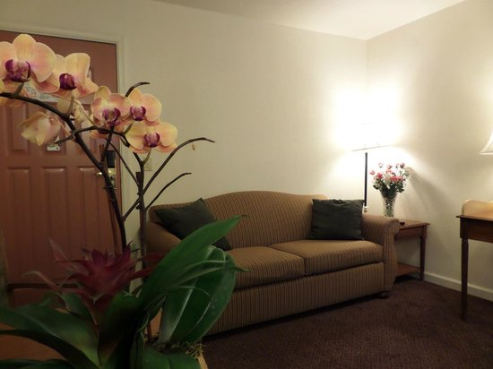 Quality Inn Tulare: Suite with Sofa Bed