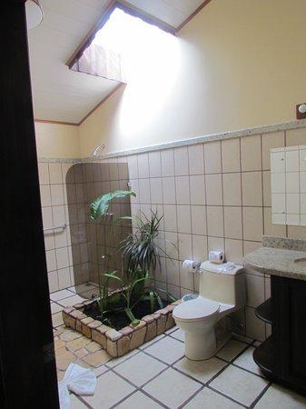 Arenal Manoa Hotel: Bath 2