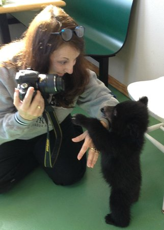 Bear Country USA: Blue wants the lens cap!