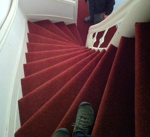 تيوليب أو أمستردام بي آند بي: Top steps