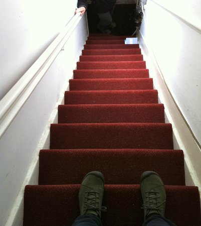 Tulip of Amsterdam B&B: Bottom steps -- steeper than they look