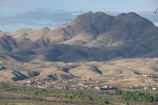 Esplendor Resort at Rio Rico: San Cayetano Mountains from the Patio