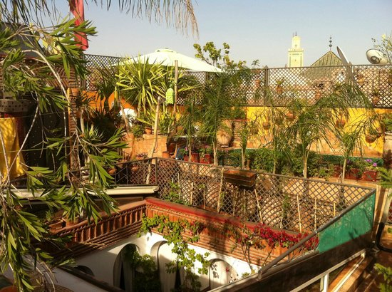 Riad CharCam : terrasse et bassin