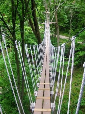 Foto Hocking Hills Canopy Tours