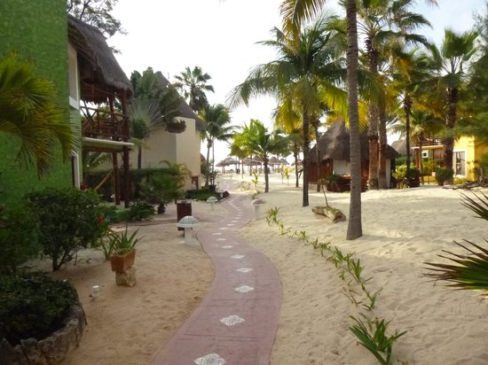 Mahekal Beach Resort: camino a la playa .