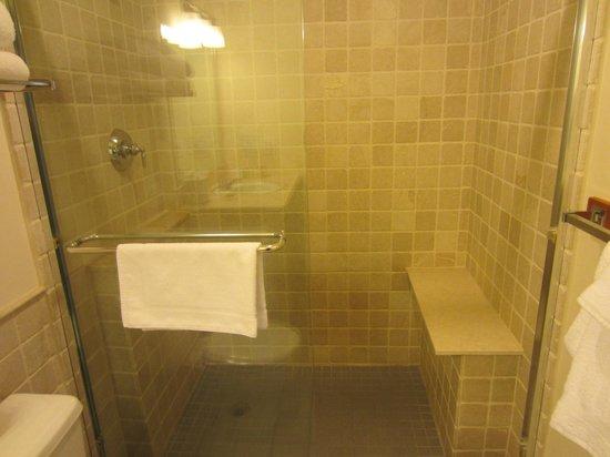 Hampton Maid: Modern shower